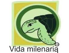 logo - VM